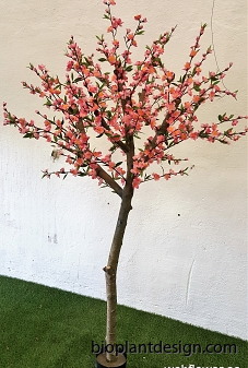 ny rosa 180 cm
