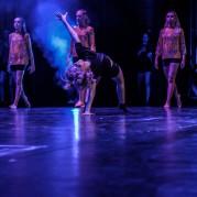 Dansbruket  (14 av 40)