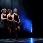 Dansbruket  (9 av 40)