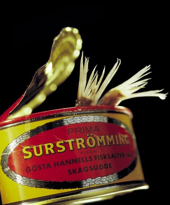 SURSTRÖM_01