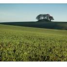 Rönneberga utanför Landskrona. Ett böljande jordbrukslandskap som präglas av många forntida gravhögar.