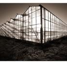 Växthus/ Greenhouse