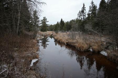 1 december 2016 - Torpedalsälven i Östervallskog avvattnar bl a Lisslevattnet och Kroksjön. Vattnet rinner ner till sjön Töck.