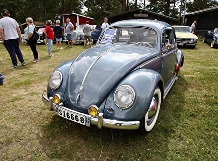 VW 1200 1954