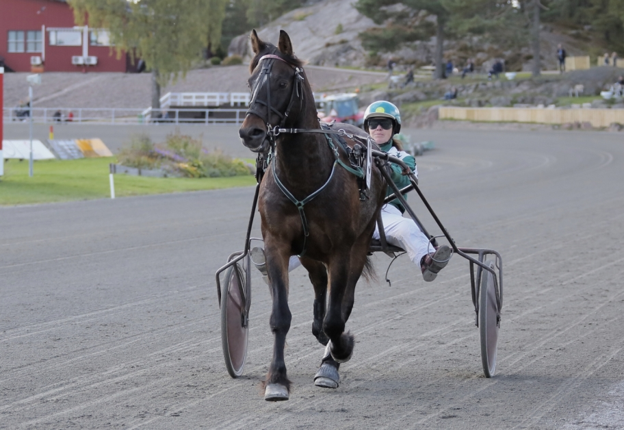 Höstbo Fredrik - en pigg 15-åring. Den 17 september startade han för sista gången på Årjängstravet.