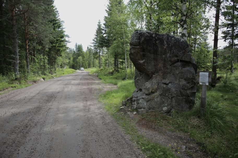 Bu´sten vid vägen mellan Årjäng och Lenungshammar.