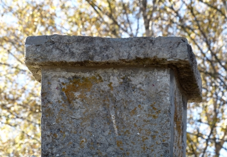 5 oktober 2017 - Ett fossil i täljstenen på en av skorstenarna.