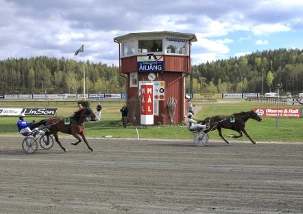 Tindra Star med Magnus Jakobsson i sulkyn bidrog till att en ensam vinnare tog hem den stora vinstsumman 15 000 000 i Grand Slam 75 på Årjängstrtavet.