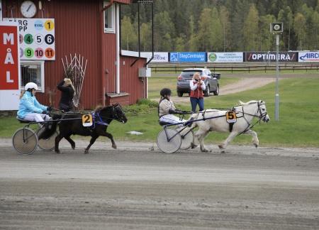 Ponnykampen - Emmeros Alladin med Lisa Persson Lunde i sulkyn tog hem segern i lopp 1 till Team Färjestad.