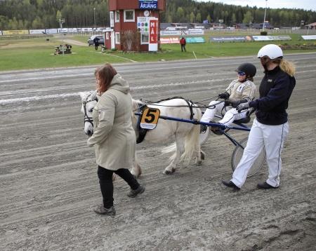 Ponnykampen - Emmeros Alladin med Lisa Persson Lunde i sulkyn.