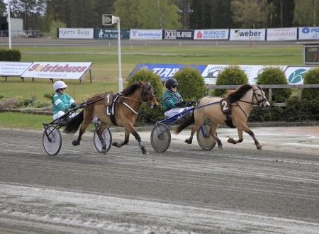 Ponnykampen - 1 Twixan med Filippa Eldh i sulkyn, 2 Mizitra med Vera Sundler i sulkyn.