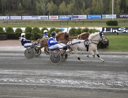 Ponnykampen - 4 Cotton Field med Hanna Bjerkliden i sulkyn, 6 Missoni Mi med Emma Sanamon i sulkyn, 10 Vikas Rosty med Victor Ekblom i sulkyn.