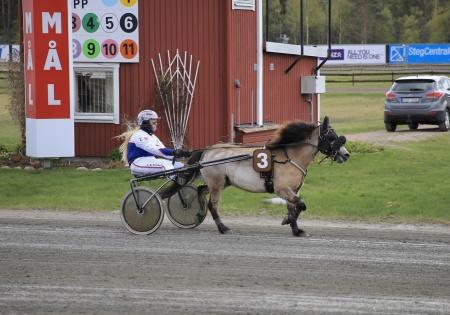 Ponnykampem - Skipper med Ebba Wiberg i sulkyn  tog hem segern i lopp 2 till Färjestad, därmed hade Färjestad vunnit båda ponnyloppen.