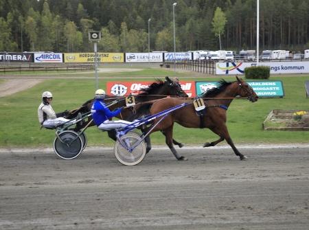 Sugarcraft med Björn Goop i sulkyn, vinnare lopp 7.