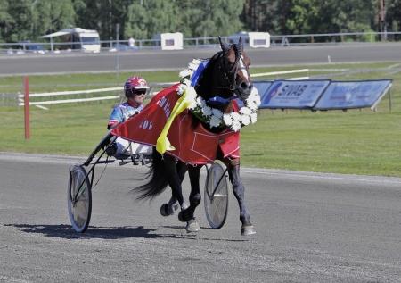 Vinnare 2014 - Flex med Torbjörn Jansson.