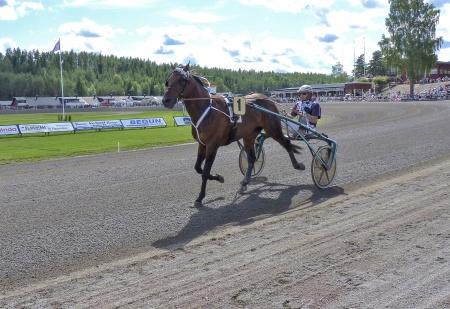1. Marshland - Ulf Ohlsson