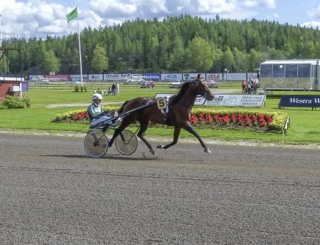 5. Torvald Palema - Åke Svanstedt
