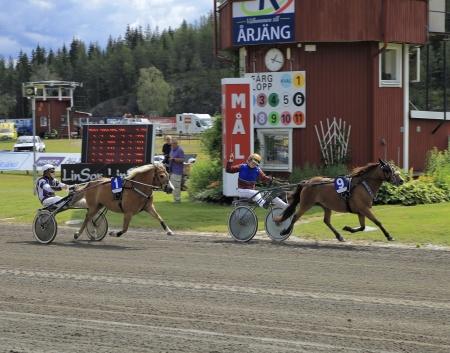 Kattedals Olivia med Paula Christensson i sulkyn vann Årjängs Lilla Sprinterlopp 2019.
