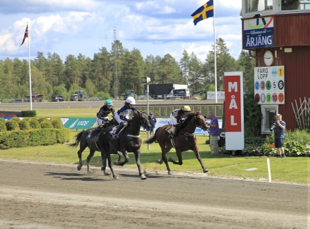 Målspurt i Montéloppet, vinnare nr 5 Joyride Cane med Sofia Adolfsson i sadeln.