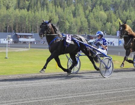 Rappnor med Ole Johan Östre