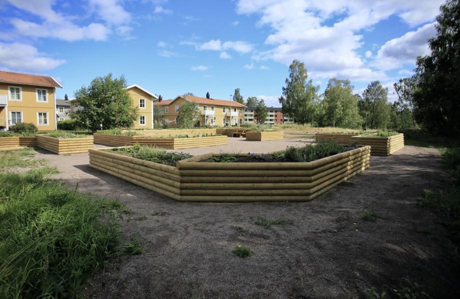 Årjängs Fjärilspark skapades under sommaren 2019. Fjärilsparken kompletteras efterhand med stensättning, blomsterängar, bänkar och bord m m. Anläggningen sköts av kommunens arbetsmarknadsenhet.