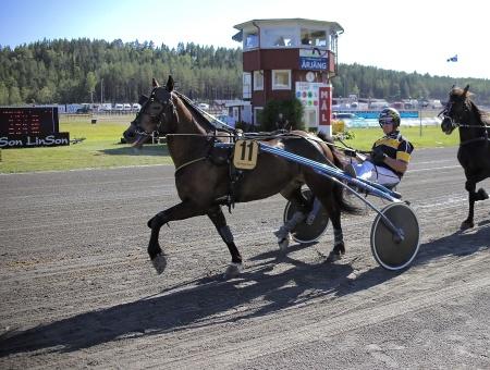 Vesle Maia med Bård Humborstad i sulkyn.