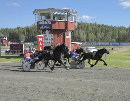 Målgång i minnesloppet Erik Perssons Memorial, och det blev Nr 5 Odins Eld med Torbjörn Jansson som tog hem segern.