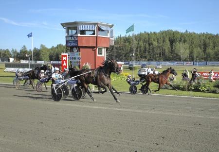 Nr 2 Dante Boko med Adrian Kolgjini i sulkyn vann Årjängs Stora Sprinterlopp.