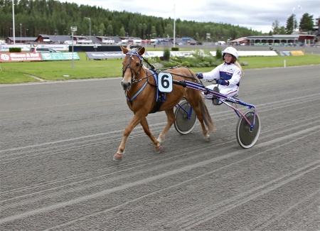 Årjängs Lilla Sprinterlopp - nr 6 Zalsa med kusken Elin Wiberg.