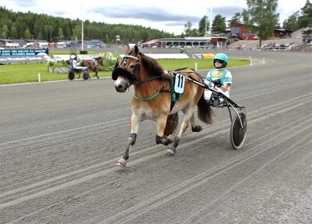Årjängs Lilla Sprinterlopp - nr 11 Eragon med kusken Emma Smedeby.