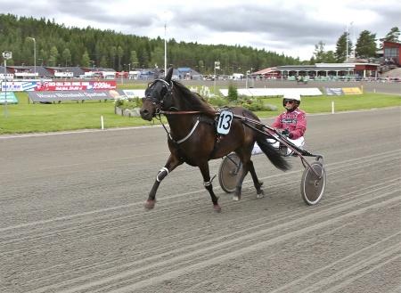 Årjängs Lilla Sprinterlopp - nr 13 Micklo Nick med kusken Cecilia Karlsson