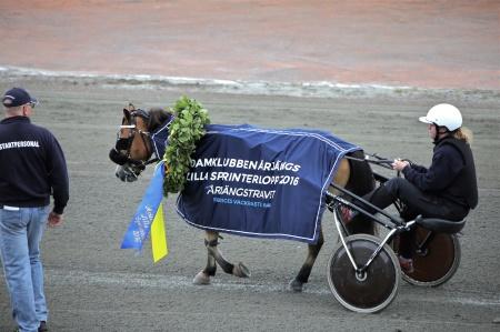 Ponnyn Eragon - segrare i Damklubben Årjängs Lilla Sprinterlopp 2016.
