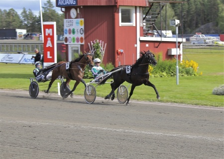 Thomas Uhrberg vann lopp 5 med Takethem.
