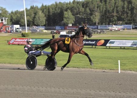 Årjängs Stora Sprinterlopp - nr 4 Dante Boko med Adrian Kolgjini i sulkyn.