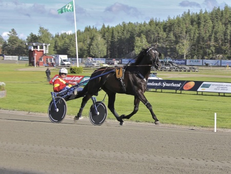 Årjängs Stora Sprinterlopp - nr 7 Chelsea Boko med Erik Adielsson i sulkyn.