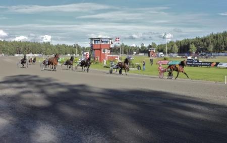 Hästarna i Årjängs Stora Sprinterlopp 2016 är på väg till start.