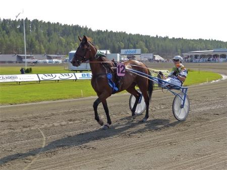 Segrande ekipage i V75-6, Estrella Dorada med kusken Kim Eriksson.