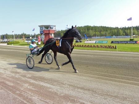 Årjängs Stora Sprinterlopp - Häst nr 3 Orecchietti - Ulf Ohlsson