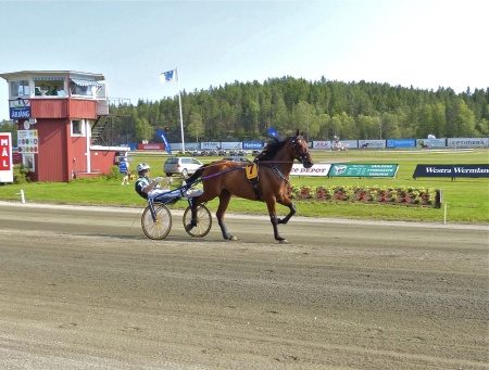 Årjängs Stora Sprinterlopp - Häst nr 7 Sanity - Johnny Takter