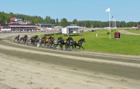 Årjängs Stora Sprinterlopp 2013.
