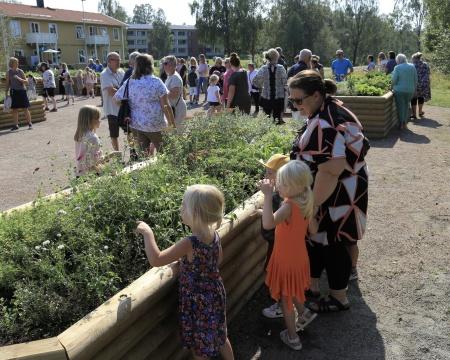 Barnen visade stort intresse för blommorna och alla pollinerare som finns i rabatterna.