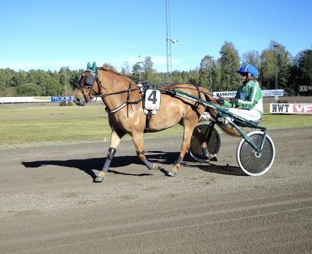 Tröstads Tyra med Isabelle Hansen i sulkyn.