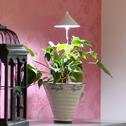 SUNLiTE växtlampa - Underhållsljus för växter där solljuset inte räcker till - Sunlite växtarmatur Vit