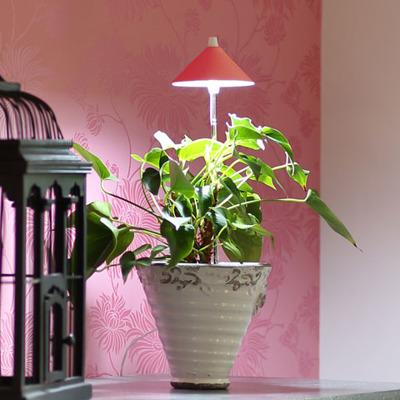 SUNLiTE växtlampa - Underhållsljus för växter där solljuset inte räcker till - Sunlite växtarmatur Röd