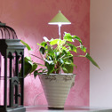 SUNLiTE växtlampa - Underhållsljus för växter där solljuset inte räcker till - Sunlite växtarmatur Limegrön