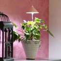 SUNLiTE växtlampa - Underhållsljus för växter där solljuset inte räcker till - Sunlite växtarmatur Koppar