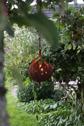 Marschallhållare Tulpan hängande ELDgarden