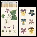 Tändsticksask - Tänsticksask violer