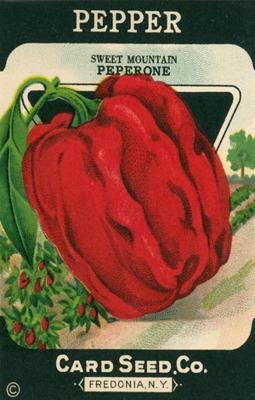 Kort för paket Vintage - Vintage paketkort 1
