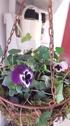 Hängampel blomsterkorg ELDgarden
